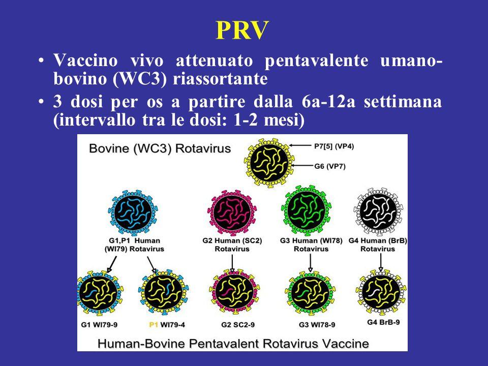 PRV Vaccino vivo attenuato pentavalente umano-bovino (WC3) riassortante.