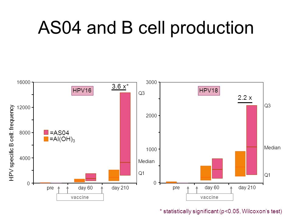 AS04 and B cell production