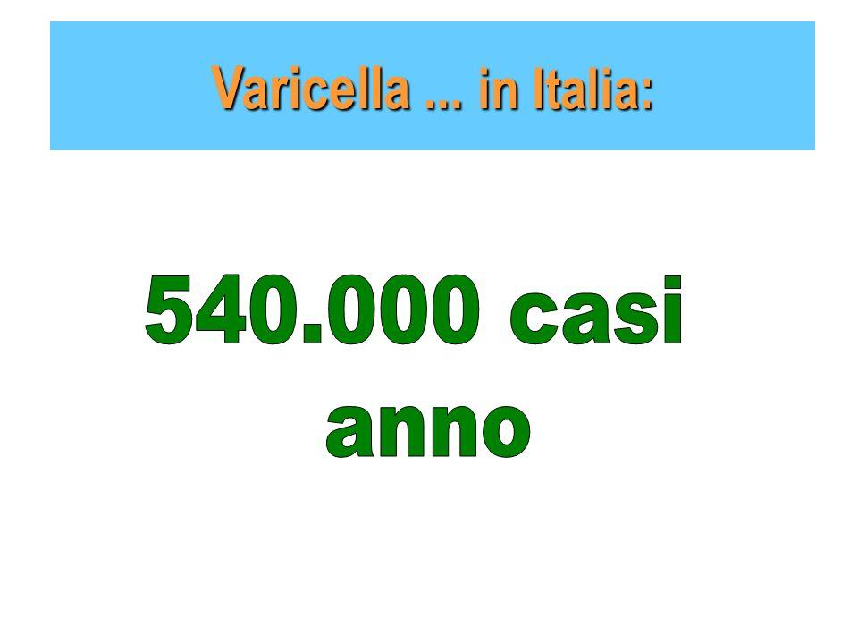 Varicella ... in Italia: 540.000 casi anno