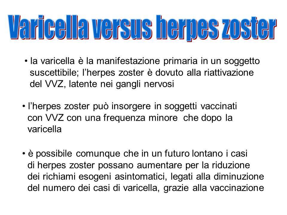 Varicella versus herpes zoster