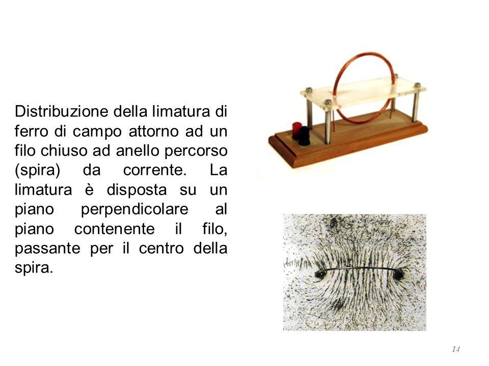 Distribuzione della limatura di ferro di campo attorno ad un filo chiuso ad anello percorso (spira) da corrente.