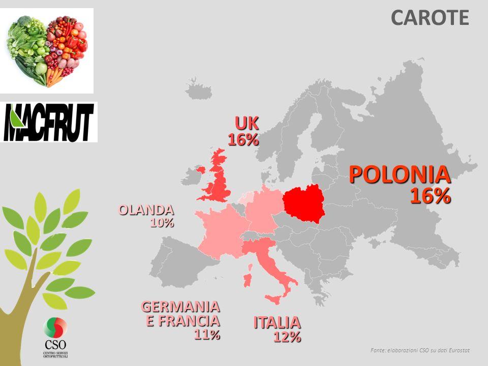 POLONIA CAROTE UK 16% ITALIA GERMANIA E FRANCIA OLANDA 11% 12% 10% 16%