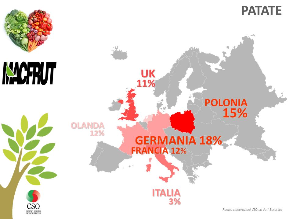 PATATE GERMANIA 18% UK POLONIA 11% ITALIA FRANCIA 12% OLANDA 3% 12%
