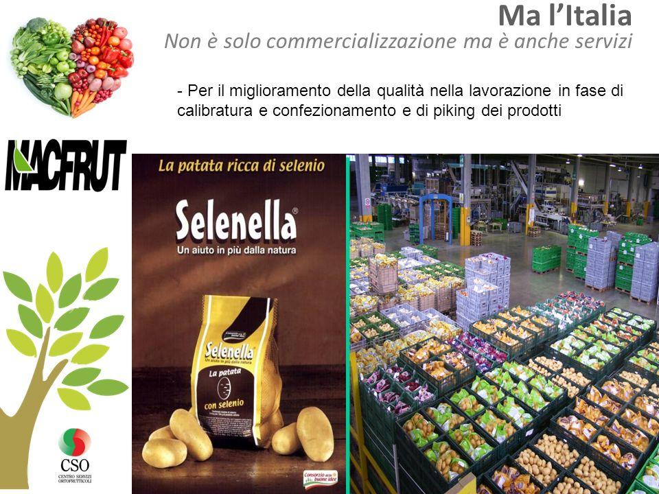 Ma l'Italia Non è solo commercializzazione ma è anche servizi