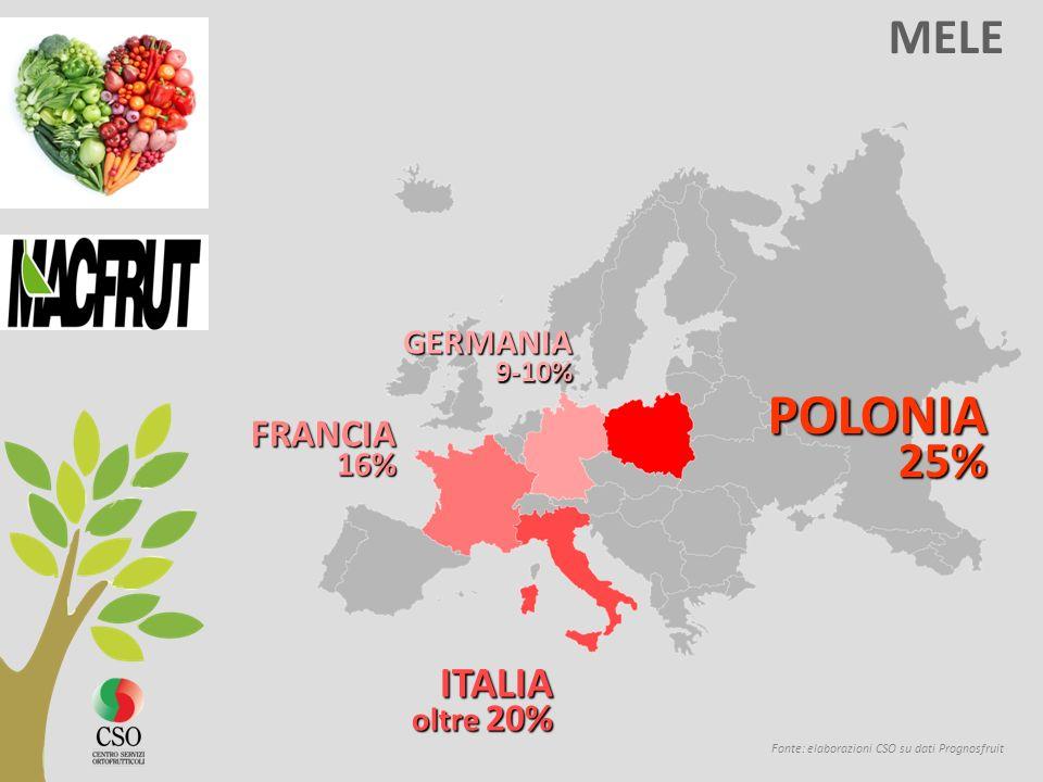 POLONIA MELE ITALIA FRANCIA GERMANIA 9-10% 16% oltre 20% 25%