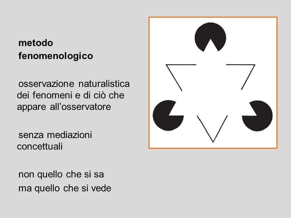 metodo fenomenologico. osservazione naturalistica dei fenomeni e di ciò che appare all'osservatore.