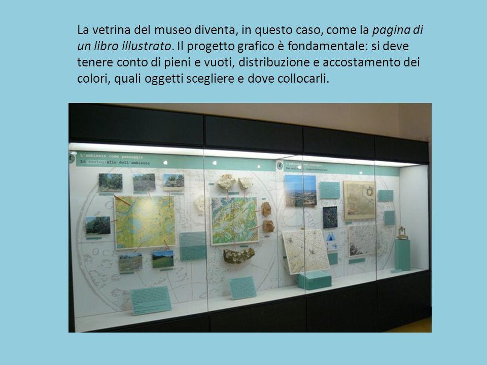 La vetrina del museo diventa, in questo caso, come la pagina di un libro illustrato.