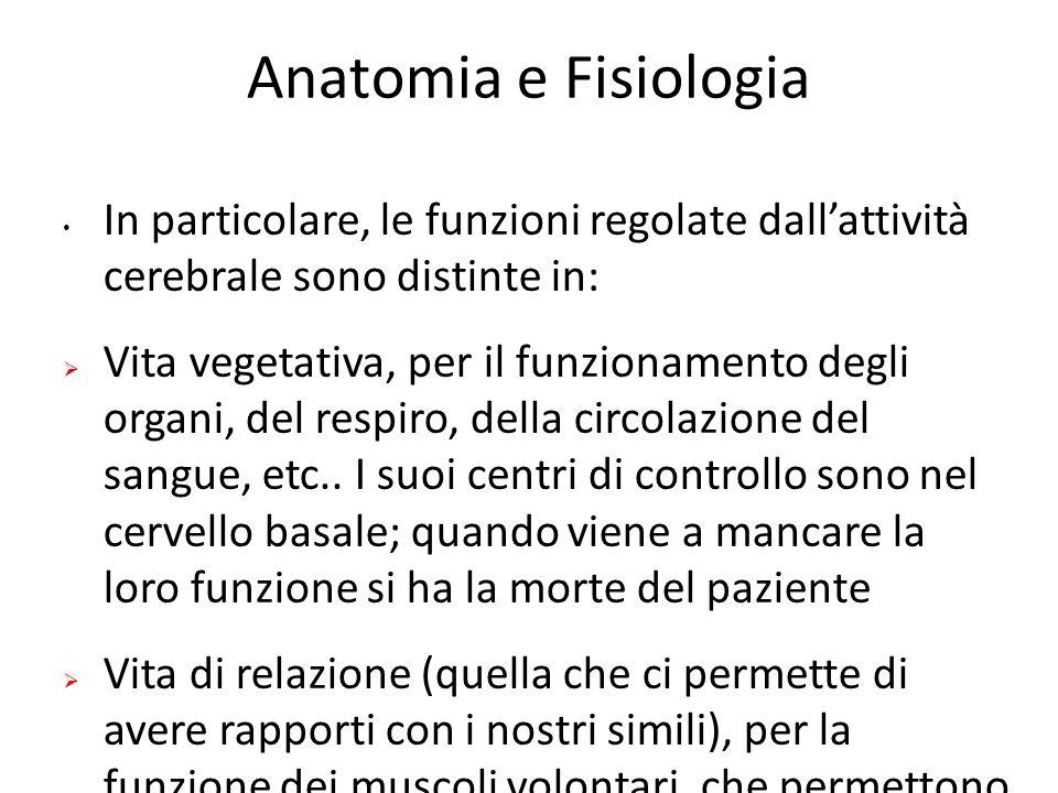Anatomia e Fisiologia In particolare, le funzioni regolate dall'attività cerebrale sono distinte in: