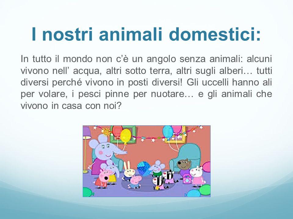 I nostri animali domestici: