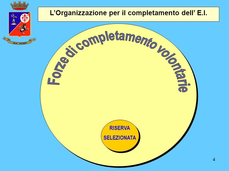 L'Organizzazione per il completamento dell' E.I.
