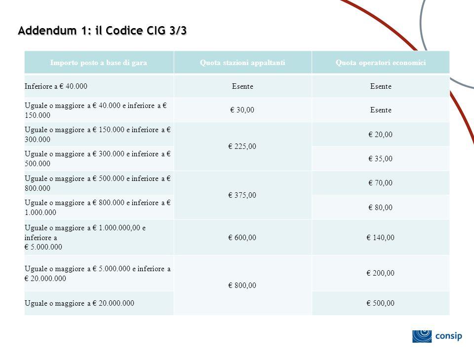 Addendum 1: il Codice CIG 3/3