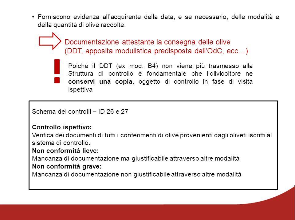 Documentazione attestante la consegna delle olive