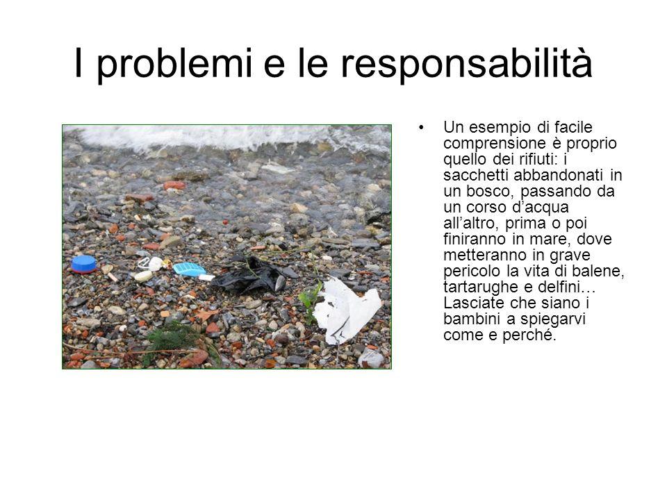 I problemi e le responsabilità