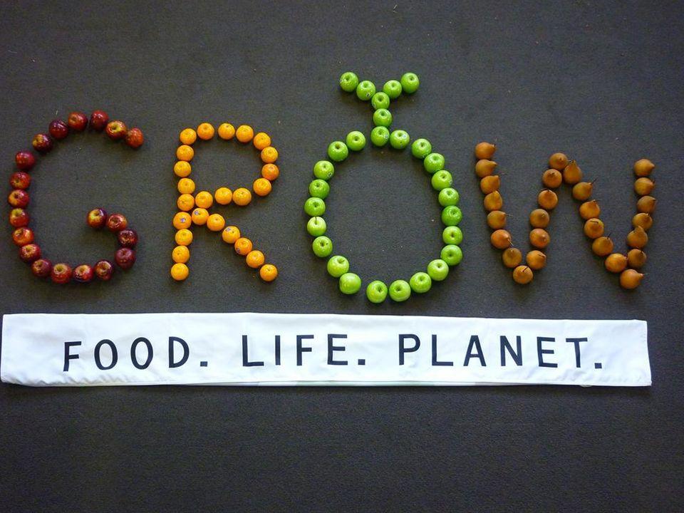 Questa presentazione spiega come è possibile che ciò accada, e perché noi esseri umani dobbiamo maturare, acquisire saggezza e imparare a condividere per fare in modo che tutti abbiano il giusto nutrimento.
