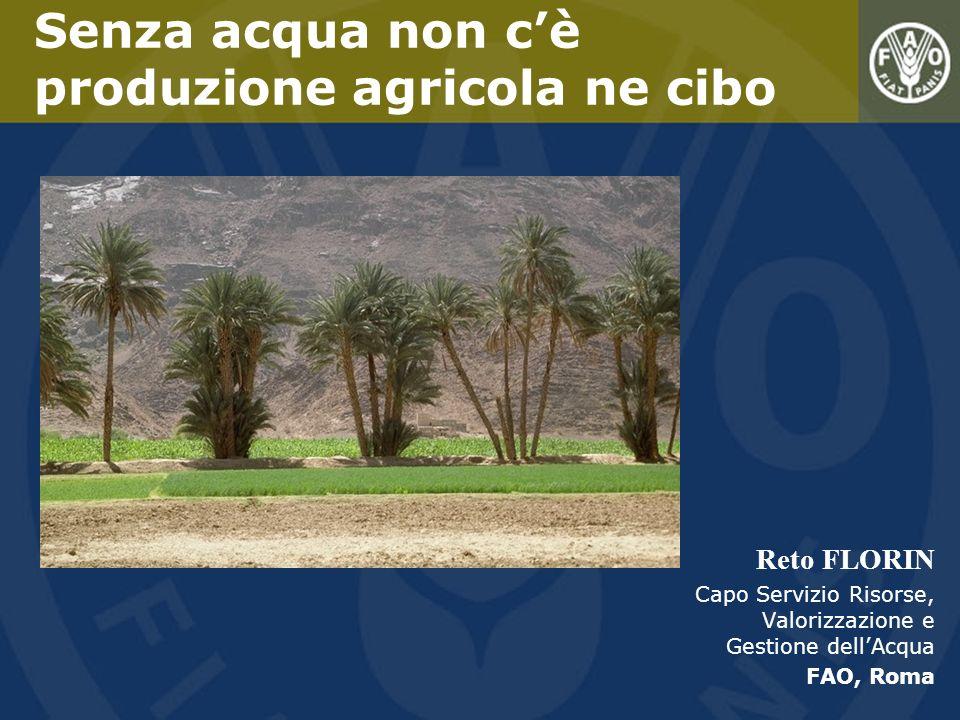 Senza acqua non c'è produzione agricola ne cibo