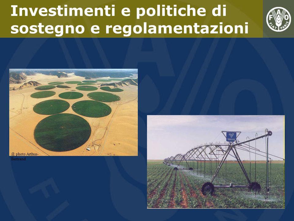 Investimenti e politiche di sostegno e regolamentazioni