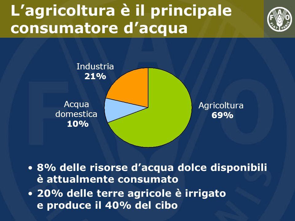 L'agricoltura è il principale consumatore d'acqua