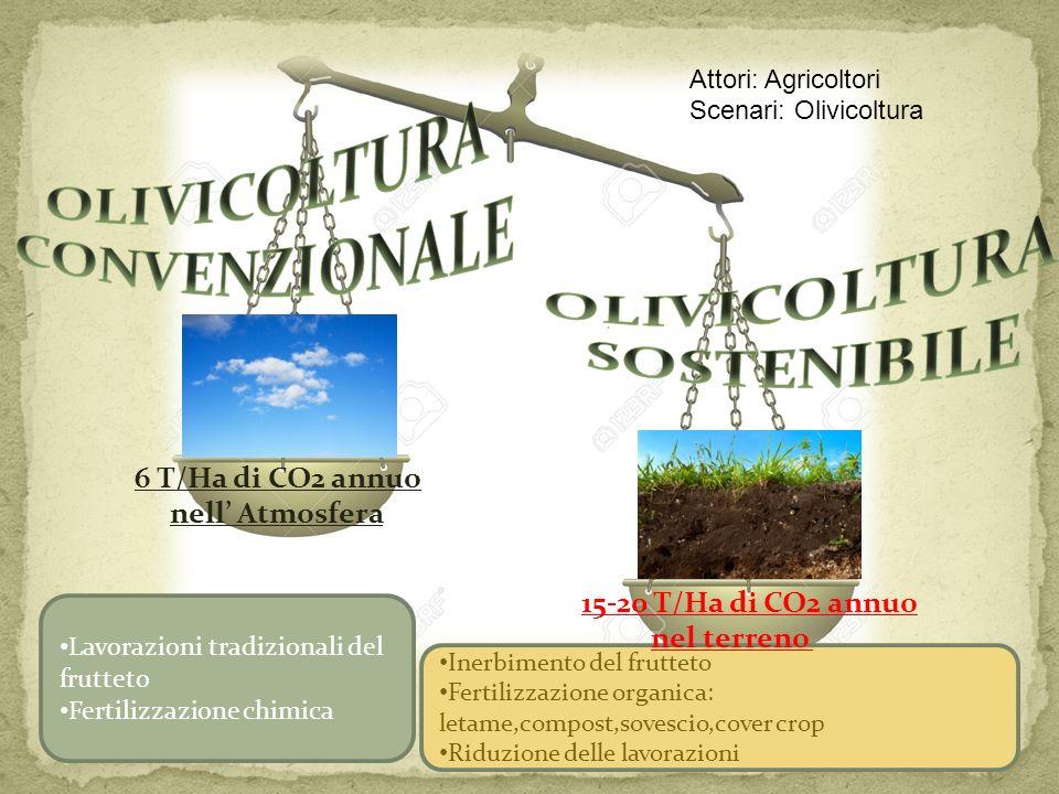 OLIVICOLTURA CONVENZIONALE 6 T/Ha di CO2 annuo nell' Atmosfera
