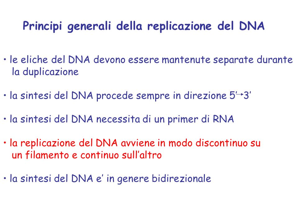 Principi generali della replicazione del DNA