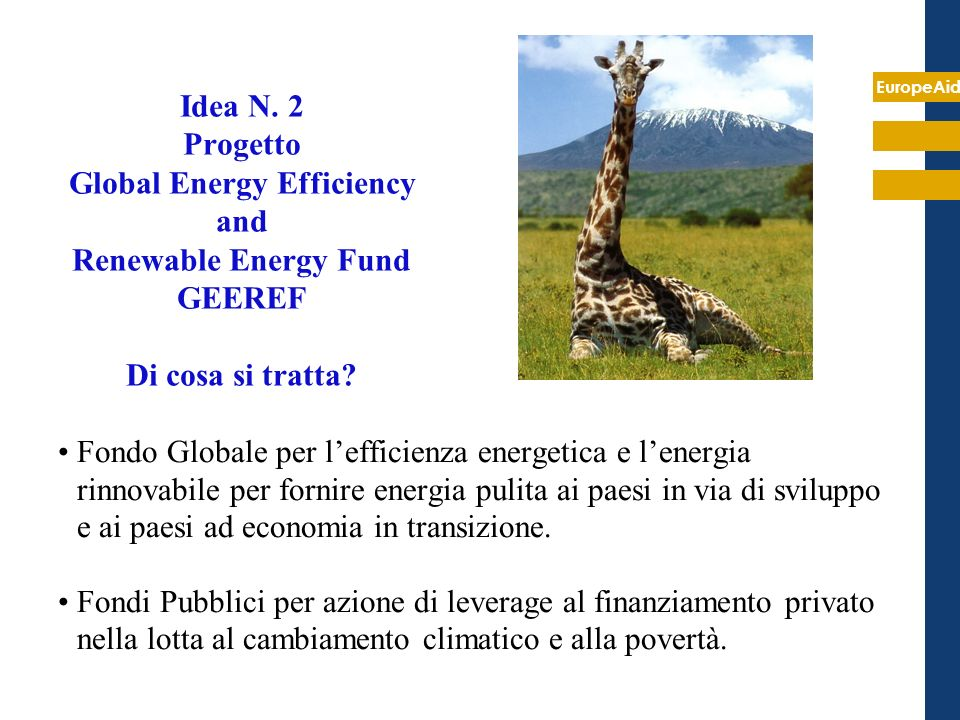 Idea N. 2 Progetto Global Energy Efficiency and Renewable Energy Fund GEEREF Di cosa si tratta