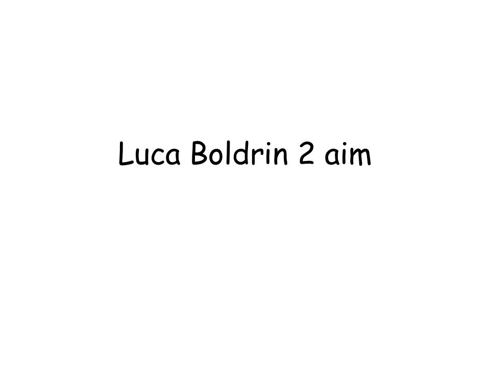Luca Boldrin 2 aim