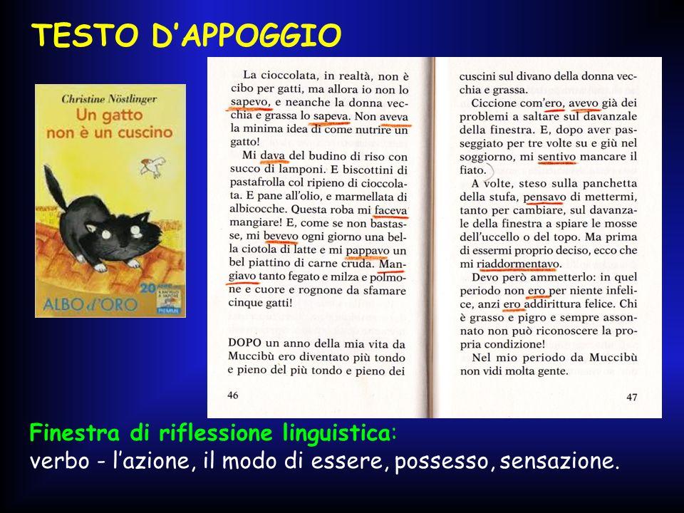 TESTO D'APPOGGIO Finestra di riflessione linguistica: verbo - l'azione, il modo di essere, possesso, sensazione.