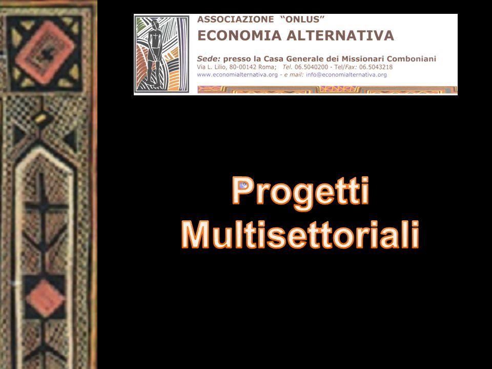 Progetti Multisettoriali