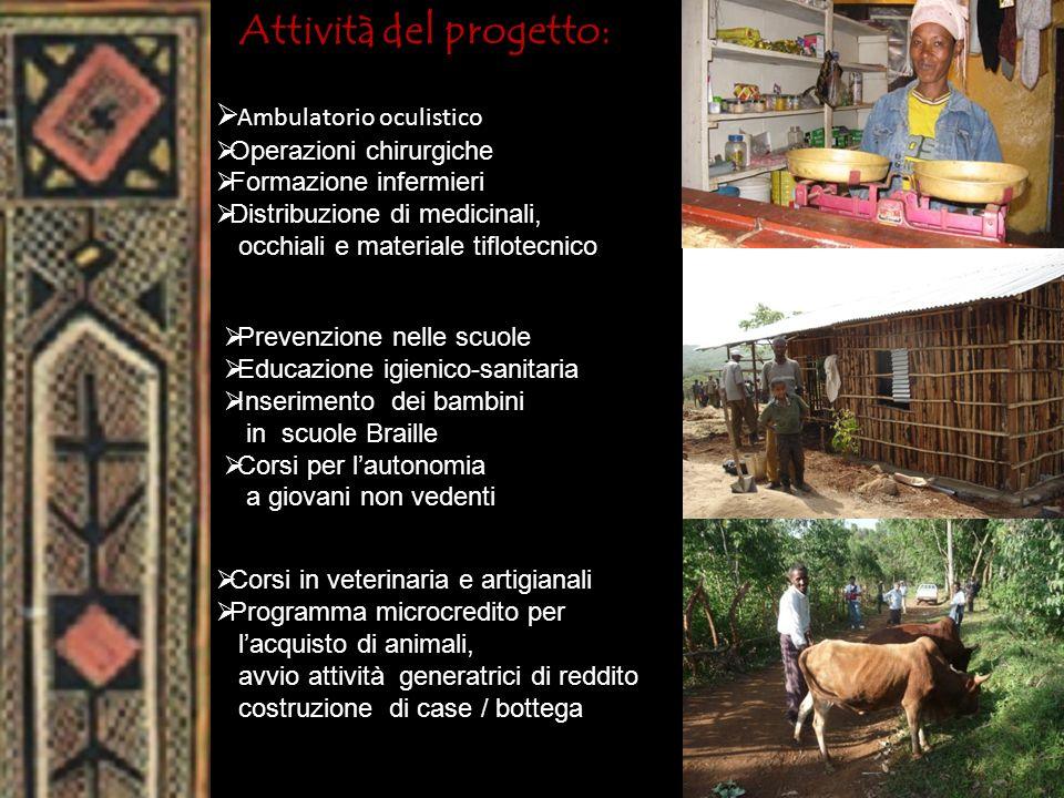 Attività del progetto: