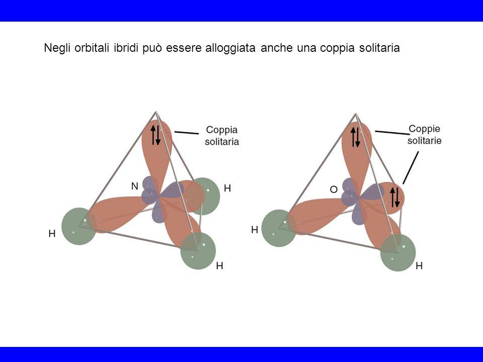 Negli orbitali ibridi può essere alloggiata anche una coppia solitaria