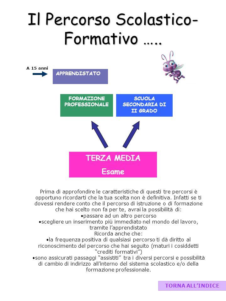 Il Percorso Scolastico-Formativo …..