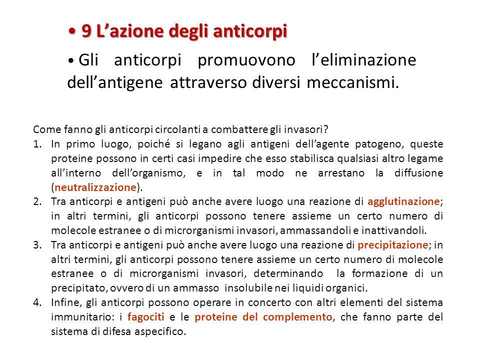 9 L'azione degli anticorpi