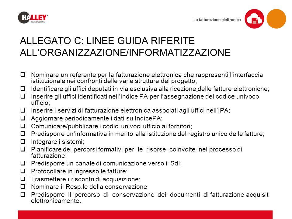 ALLEGATO C: LINEE GUIDA RIFERITE ALL'ORGANIZZAZIONE/INFORMATIZZAZIONE