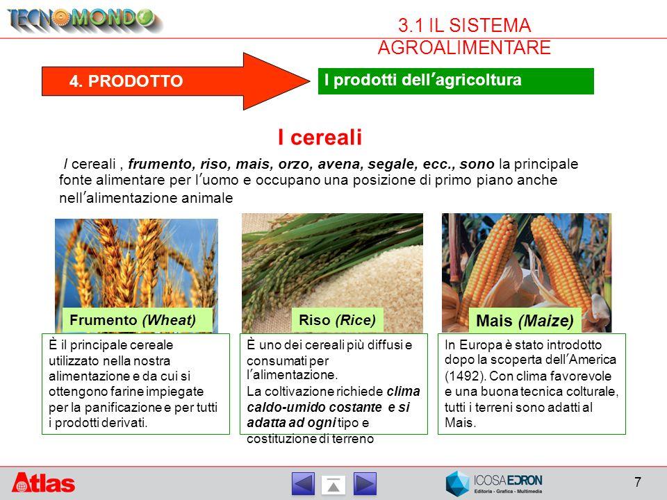 3.1 IL SISTEMA AGROALIMENTARE