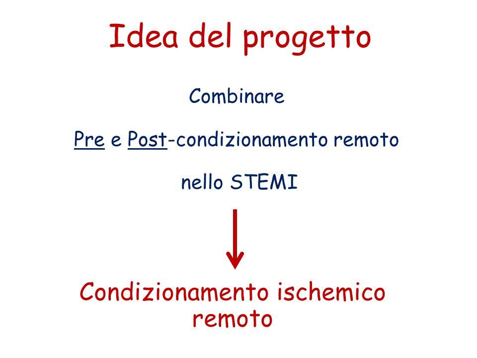 Idea del progetto Condizionamento ischemico remoto Combinare
