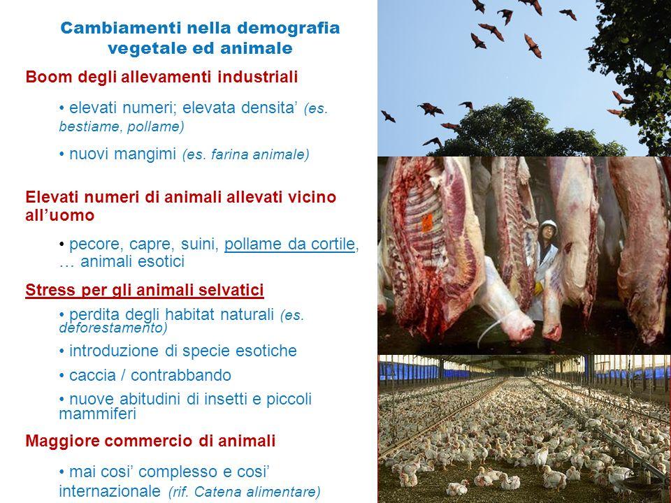 Cambiamenti nella demografia vegetale ed animale