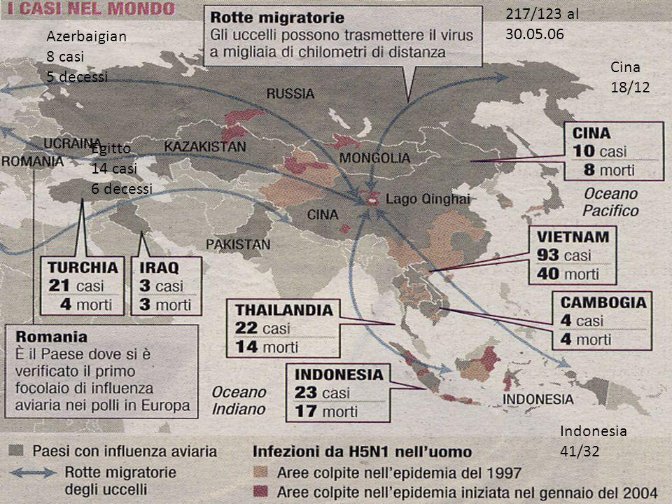 217/123 al 30.05.06. Azerbaigian. 8 casi. 5 decessi. Cina. 18/12. Egitto. 14 casi. 6 decessi.