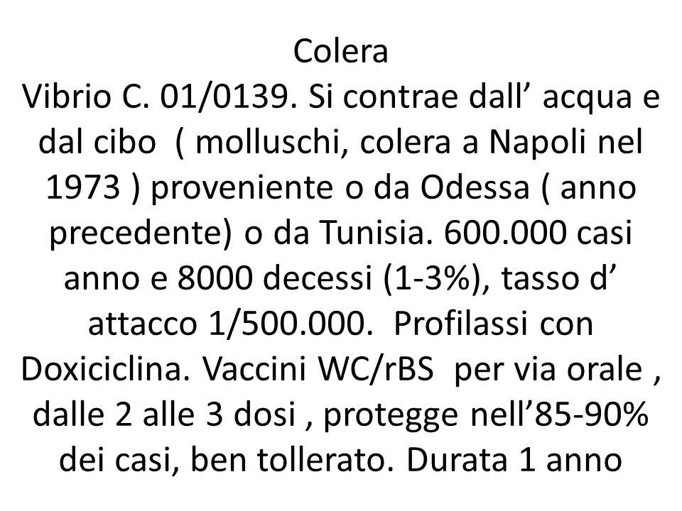 Colera Vibrio C. 01/0139.
