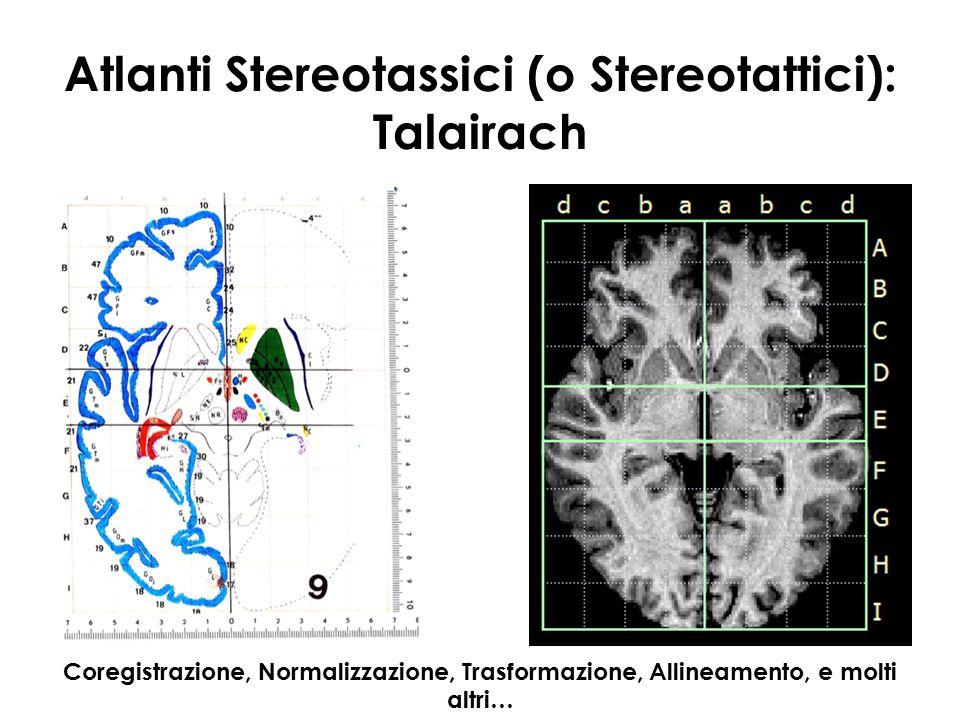 Atlanti Stereotassici (o Stereotattici): Talairach
