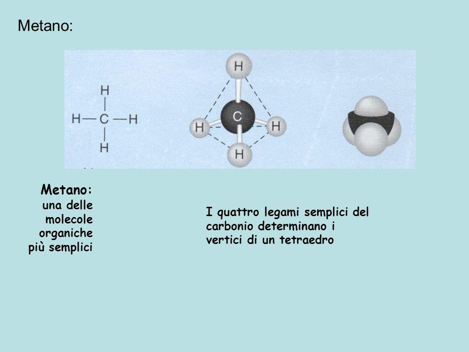Metano: Metano: una delle molecole organiche più semplici
