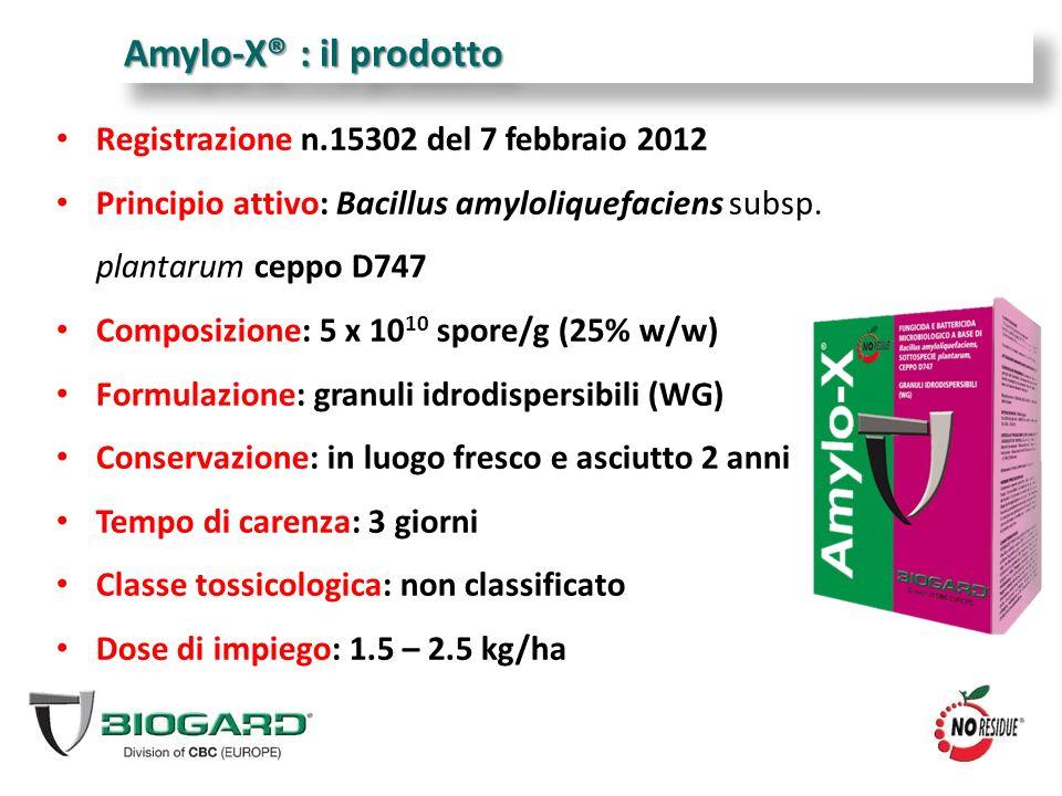 Amylo-X® : il prodotto Registrazione n.15302 del 7 febbraio 2012