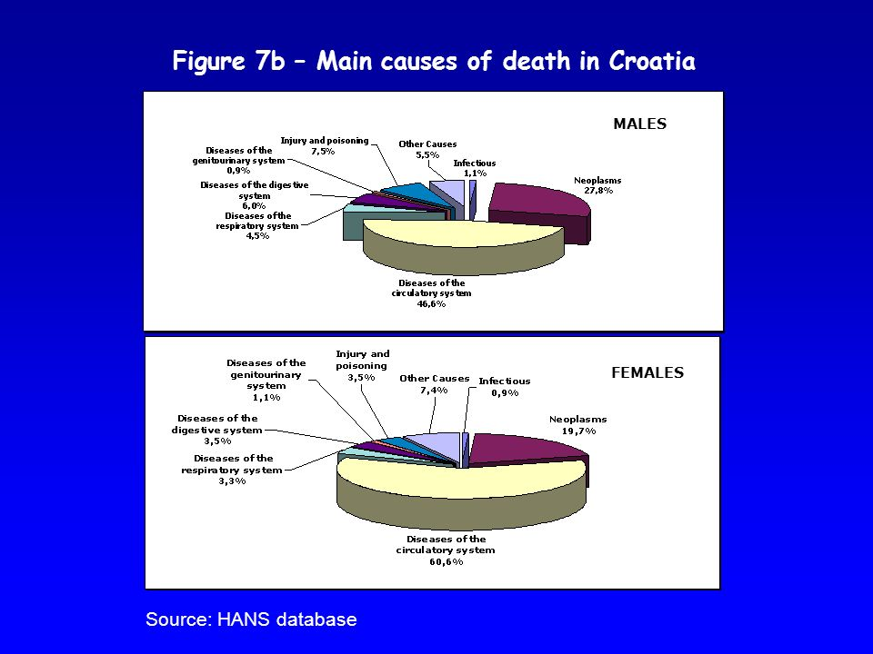 Figure 7b – Main causes of death in Croatia