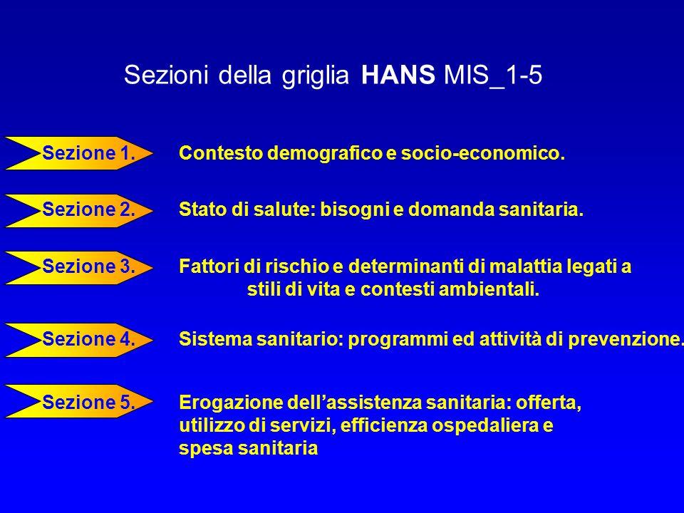 Sezioni della griglia HANS MIS_1-5