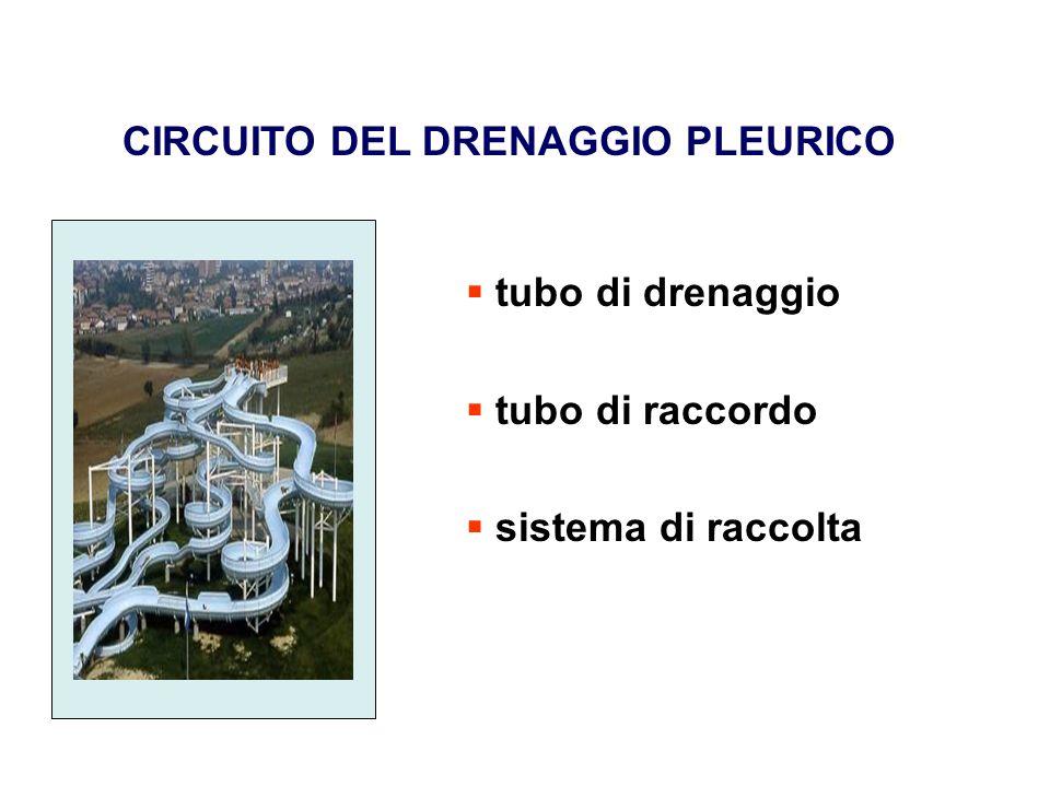 CIRCUITO DEL DRENAGGIO PLEURICO