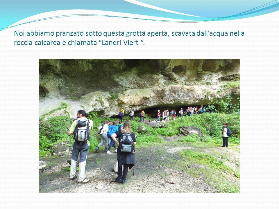 Noi abbiamo pranzato sotto questa grotta aperta, scavata dall'acqua nella roccia calcarea e chiamata Landri Viert .
