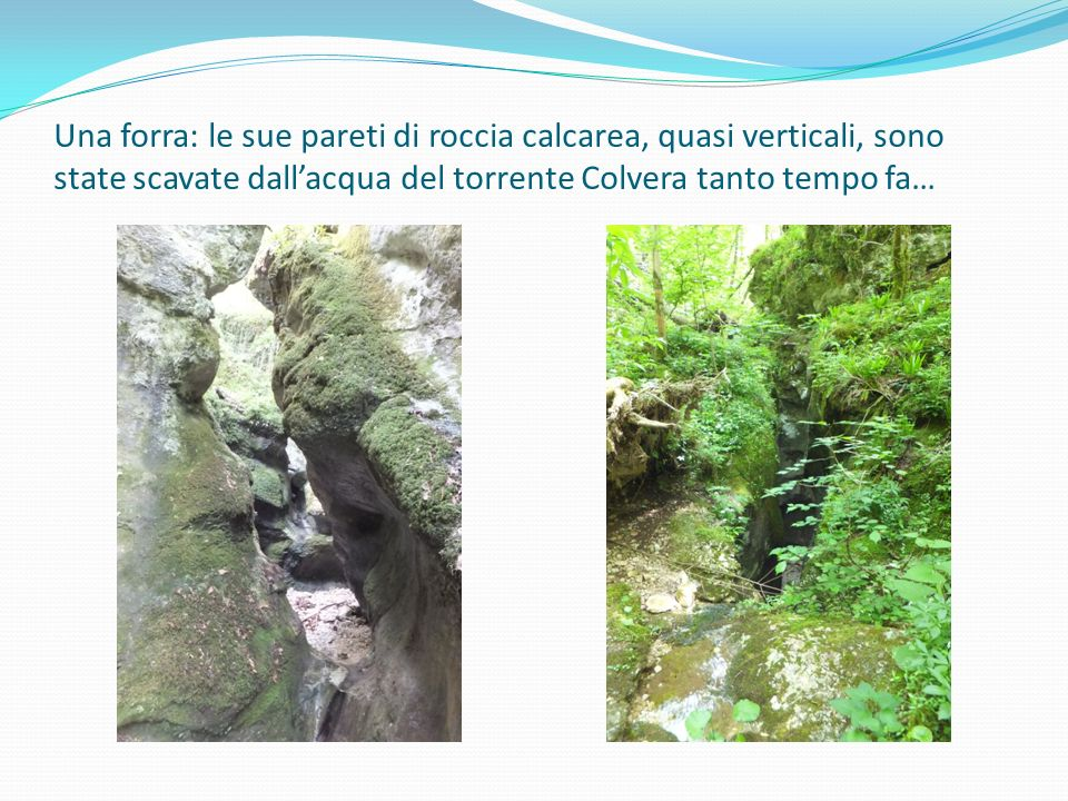 Una forra: le sue pareti di roccia calcarea, quasi verticali, sono state scavate dall'acqua del torrente Colvera tanto tempo fa…