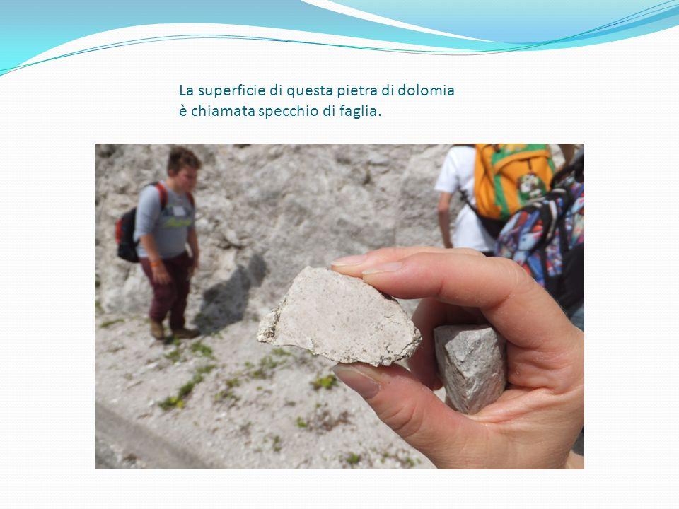 La superficie di questa pietra di dolomia è chiamata specchio di faglia.