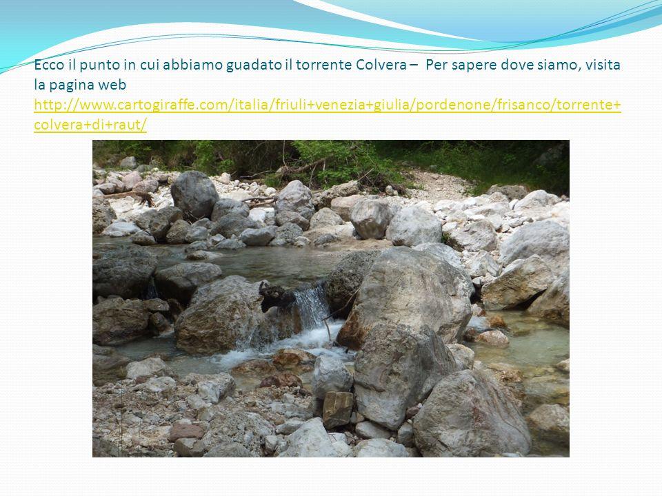 Ecco il punto in cui abbiamo guadato il torrente Colvera – Per sapere dove siamo, visita la pagina web http://www.cartogiraffe.com/italia/friuli+venezia+giulia/pordenone/frisanco/torrente+colvera+di+raut/