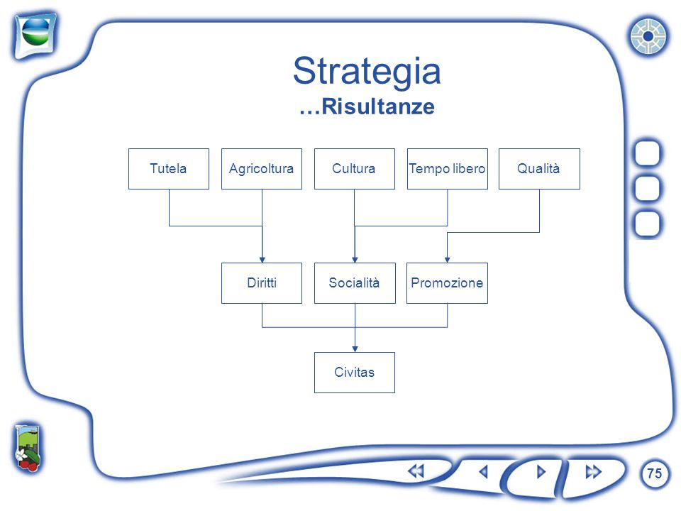 Strategia …Risultanze