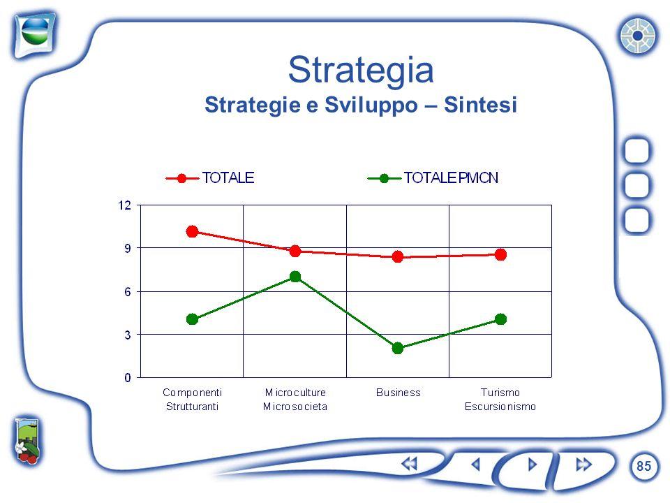 Strategia Strategie e Sviluppo – Sintesi