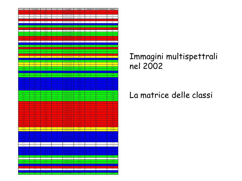 Immagini multispettrali nel 2002